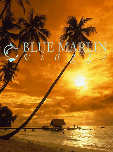 Caraibi Agenzia Speciale Roma Blue Offerte Viaggi Marlin tQsxdhrC